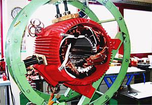 Neuwicklung Stator für LOHER Motor ANGA 355 LB 02 A